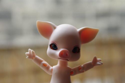 Hello Piggie!