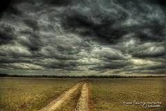 Para cruzar el temporal