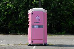 PINK POT (ONE/MILLION) Tags: pink vacation indiana toilet roadtrip plastic pot outhouse find stink oder noblesville portolet shithouse onemillion williestark honeydipper odiferous