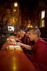 Preghiera nel gompa a Bouddhanath (Nepal) (nepalbaba) Tags: nepal prayer monks 2008 nationalgeographic gompa preghiera monaci bouddhanath anawesomeshot impressedbeauty concordians earthasia paololivornosfriends allegrisinasceosidiventa gigilivornosfriends renatatmexnepalbaba
