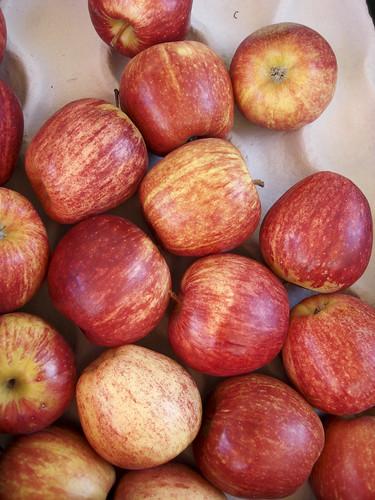 Gala-Äpfel