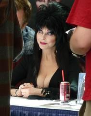 Celebrity - Elvira 3