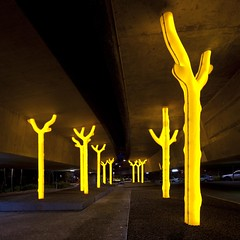 aspire by warren langley (ghee) Tags: road trees light sculpture yellow by forest canon lights golden ramp tripod sydney australia freeway nsw leds 5d glowing warren below ultimo density aspire polyethylene harrisstreet ghee western dieback trees figstreet canon golden 5d high light forest sculpture warren distributor glowing langley aspire polyethylene