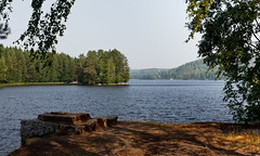 Lakeside view at Siuro (Mika Hirsimki) Tags: trees summer lake canon suomi finland shore vesi kes ranta jrvi puita siuro vesist canon5dmarkii