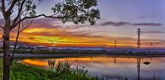 iPhone 4 shot Oloneo PhotoEngine test Atagoike Pond panorama 兵庫稲美愛宕池夕景パノラマ-HDR