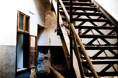 way up (mav_at) Tags: door urban abandoned underground austria keller österreich factory empty fenster leer exploring fabrik treppe derelict cellar tür verlassen urbex