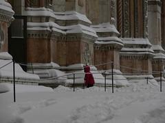 neve (quercus cerris) Tags: lumix neve bologna rosso sanpetronio