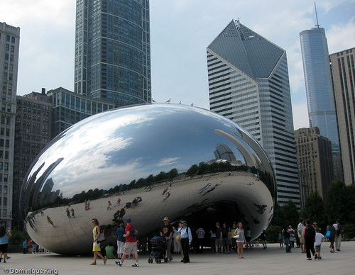 Chicago's Bean-7