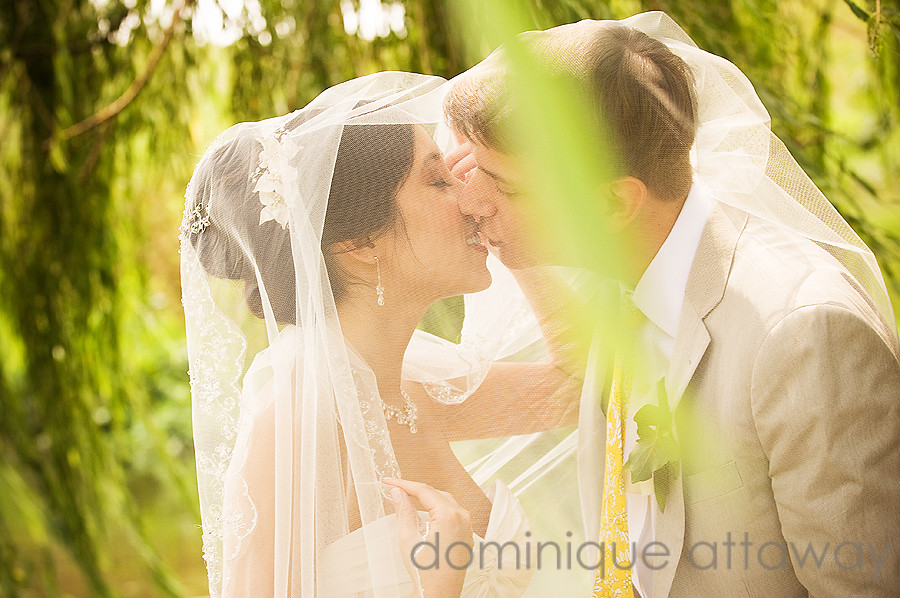 newlywed kissing under veil