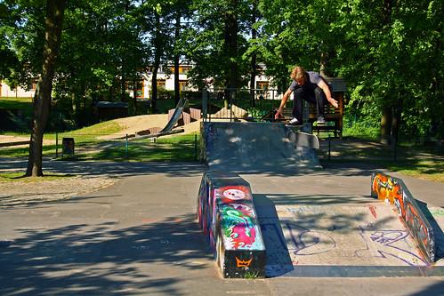 Tom Kickflip Skatepark