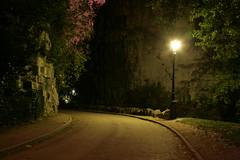 """Paris, Parc des Buttes-Chaumont : """" Nocturne """""""