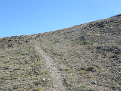 Trail eases up Buckhorn.