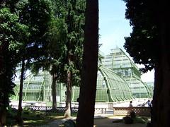 Tiergarten Palmenhaus (pensivelaw1) Tags: vienna austria opera stephansdom gloriette kaisergruft schlossschonbrunn struprecht kapuzinerkirche issakides