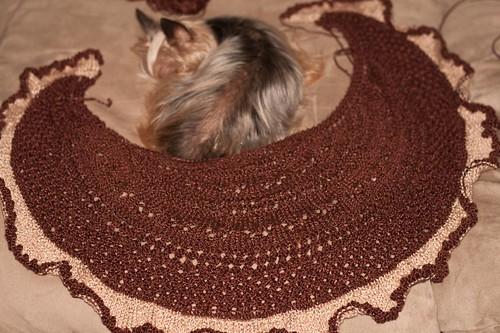 Knitting - 026