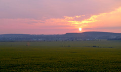 Kamianets-Podilskyi / - (Ukraine) - Sunflower Landscape (Danielzolli) Tags: rural landscape paisaje ukraine sunflower paysage landschaft girasole paesaggio sonnenblume ukraina ucrania ukrajina ucraina provinz  kamianetspodilskyi kamyanetspodilsky kamieniecpodolski  pejsaz kamyanetspodilskyi podole  podolia  podillya kamenetspodolsky khmelnytskyioblast   podillia cameniapodoliei podillja khmelnytskaoblast  khmelnychchyna chmelnyccyna