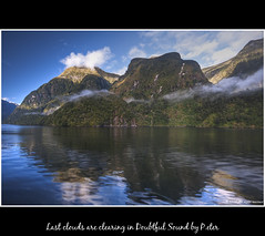 Last clouds are clearing in Doubtful Sound (pDOTeter) Tags: newzealand nature water landscape material hdr doubtfulsound fiordland photomatix tonecompression nikond90 photomatixhdr