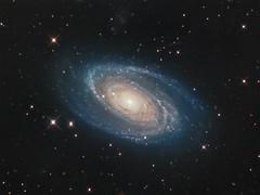 Bright Galaxy M81