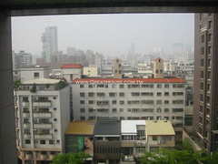 黃金新象:窗景