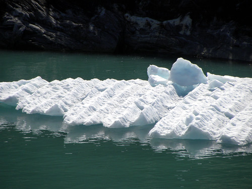 Tracy Arm Icefloes