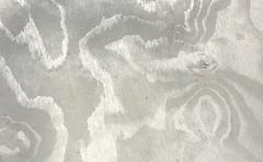 20100815 vaneri b 399 (vaula) Tags: texture gray cc creativecommons plywood veneer harmaa