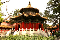Imperial Gardens 17 (David OMalley) Tags: china city red beauty architecture capital chinese beijing palace forbidden empire imperial  forbiddencity dynasty emperor  grandeur  verbotenestadt citinterdite    verbodenstad cidadeproibida cittproibita yasakehir chineseempire    ipinagbabawalnalungsod cmthnhph