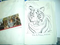 TigerMoleskine[20100820]