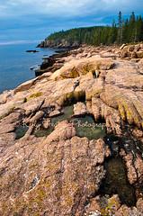 Otter Cliffs (Kelly_Heaton_Photography) Tags: trees water sunrise maine workshop shore acadia acadianationalpark creativecomposition kellyheaton edheaton otterscliffs