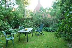 stormschade in tuin (Natracha) Tags: storm groningen sering schade