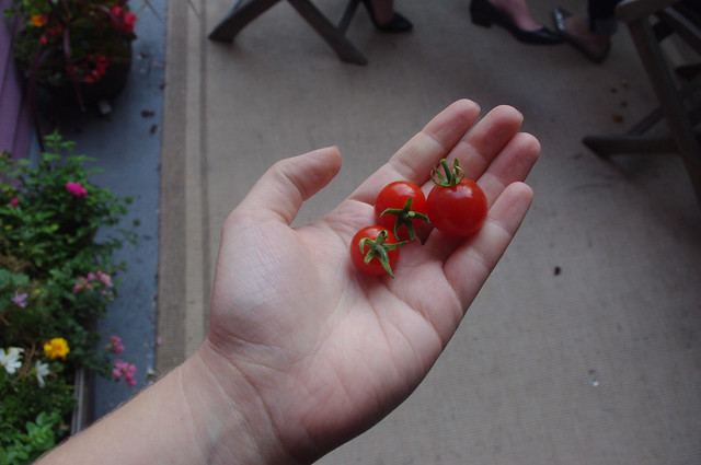 Produce from my garden