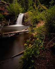 Four Minutes of West Creek Falls (Fort Photo) Tags: longexposure summer fall nature landscape waterfall nikon colorado nps falls co rmnp np cascade rockymountainnationalpark silky 2010 floers sna larimer westcreek vle nikon1735 d700 westcreekstatenaturalarea bwneautraldensity