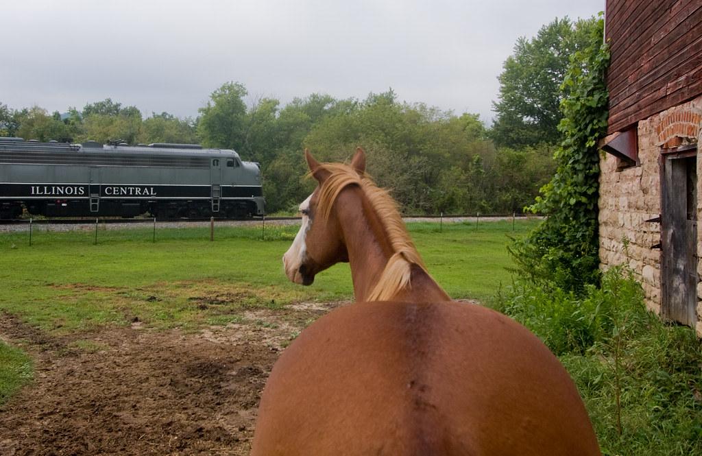 Horsepower; Dodge, WI