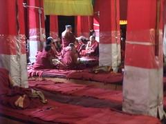 L'examen -4 (So_P) Tags: buddhism tibet examen monastery lhasa monastre sera bouddhisme budismo philosophie buddhismus lhassa buddismo gelugpa
