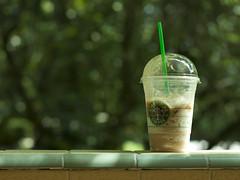 Starbucks environment (Gerardography) Tags: verde green colors contrast canon 50mm bokeh caramel starbucks environment 18 frappuccino 500d frape contaste frapuchino t1i
