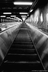 Risalire; (©Sybelle'sPhotography {martinapeloponesi}) Tags: scale stairs metro sweden stockholm infinity sverige metropolitana tunnelbana svezia mobili