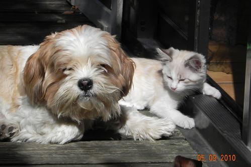 Max en Baileys