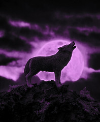 Wolf Moon (f/28) Tags: moon wolf full