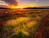 Nova Scotia Fall Colors, Canada (kevin mcneal) Tags: autumn sunset canada fall novascotia seasons fallcolor maritimes advocateharbour colorphotoaward