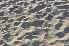 Small Sand Dunes (photoman82) Tags: light texture beach manchester ma sand soft shadows massachusetts newengland bumpy northshore manchesterbythesea singingbeach