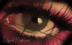 eye72