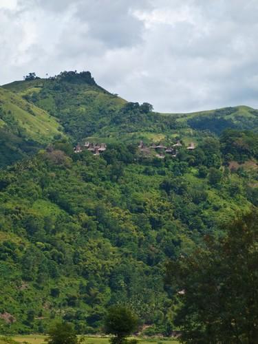Sumbanese Traditional Village
