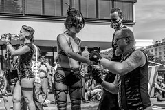 Pride 2017 (morten f) Tags: mask pride oslo norge norway street photography parade gay rights homo 2017 city people monochrome brennvidde tog happy woman domination collar all four drinking water hot