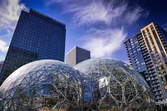 Amazon Biospheres, Seattle (Paddy O) Tags: globes biosphere domes 2017 seattle biodome ecosphere sky 4thofjuly spaceship amazon southlakeunion downtown