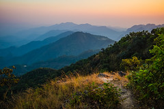 Back to the ground (Flutechill) Tags: mountain nature landscape forest asia outdoors scenics hill tree fog travel sky ruralscene sunset beautyinnature mountainpeak mountainrange valley chiangmai thailand doiangkhang