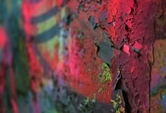 (jna.rose) Tags: graffiti pittsburgh pennsylvania paint chipping pink colorful colors nikon d5300 focus depthoffield shallow urbanexploration urban art city painting painted photography exploration concrete