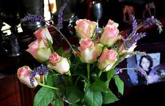 Roses and Lavender (Caulker) Tags: bouquet roses lavender june 2017