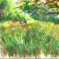 dimanche (un pinceau à l'ouest) Tags: vert aquarelle watercolor nature arbres vélos bicycle chien vacances campagne green herbe