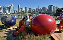 """deinstalling """"Love Your Bean"""" by C. Cavallaro at Charleson Park (roaming-the-planet) Tags: loveyourbeanbyccavallaro charlesonpark falsecreek vancouver deinstallation vancouverbiennale publicart"""