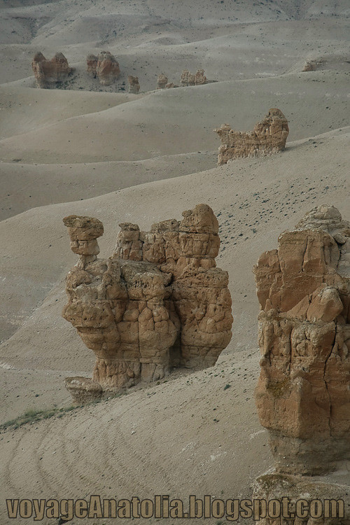 Rock Sculptures in the Desert by voyageAnatolia.blogspot.com