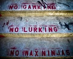 No Wax Ninjas (J.T.R.) Tags: toronto lumix raw skaters panasonic skatepark skater lightroom eastyork sk8terboi lx2 waxninja