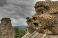 Looking west (fuerst) Tags: greatbritain travel sky abbey face clouds scotland gesicht ruin himmel wolken ruine melrose kloster reise schottland wasserspeier scottishborders spouter abtei grosbritannien canoneos1000d